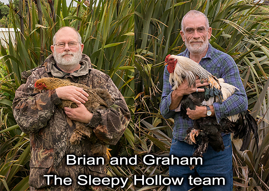 The Sleepy Hollow Team