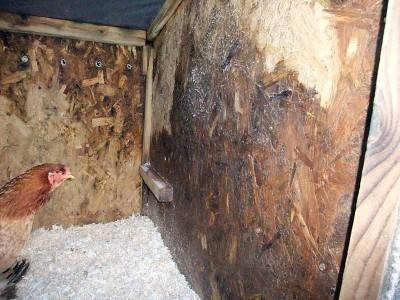 Damp Coop Panels